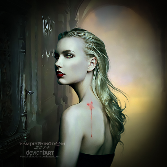 Transylvania by vampirekingdom