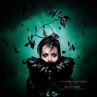 Crows by vampirekingdom