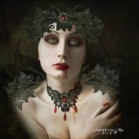 The  Illusion by vampirekingdom