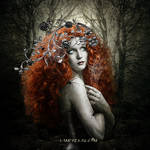 The lady of the black forest