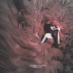 Rosas-Sedas y Sangre
