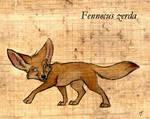 Fennecus zerda