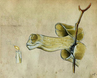Oogway by Skia