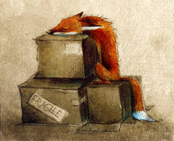 Fox on Box by Skia