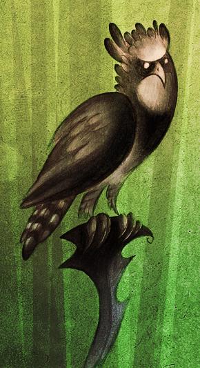 Harpy Eagle by Skia