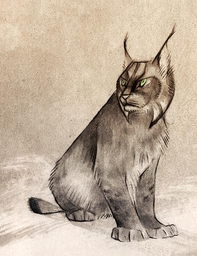 Lynx by Skia