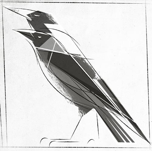 Birds. by Skia