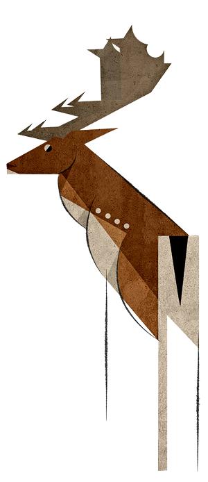 Fallow Deer by Skia