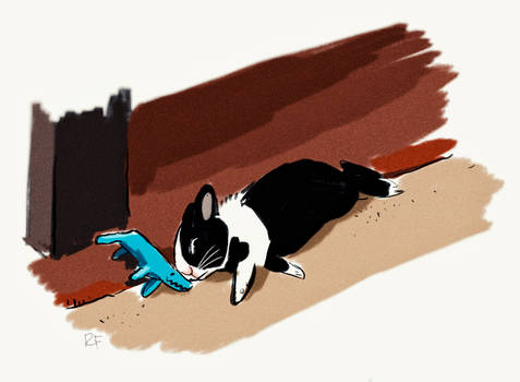 Rabbit and Plush Wolf