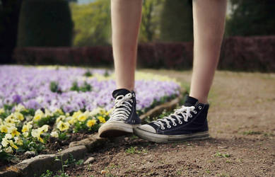 tiptoe into spring by NikolasBrummer