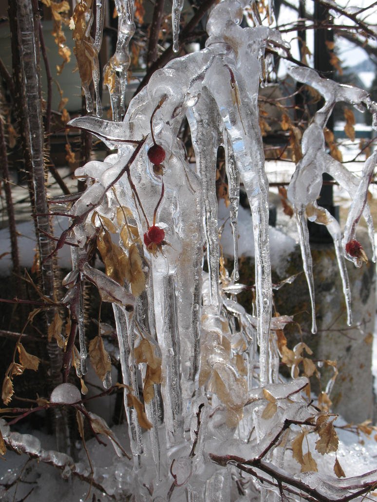 Icicles by Mind-Illusi0nZ-Stock