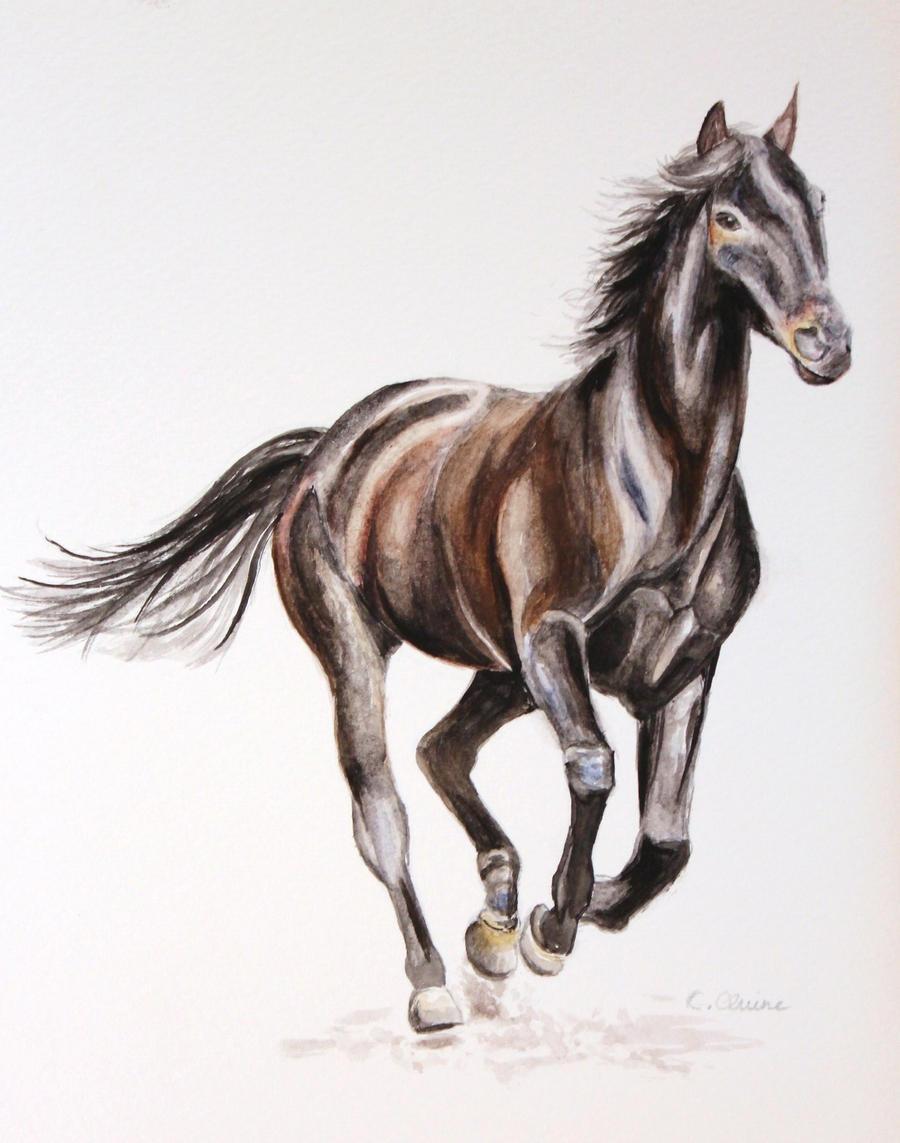 Horse - Watercolour by christina-0o