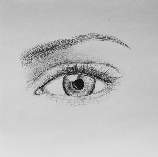 Ballpoint Pen Eye Drawing Pen Eye Drawing