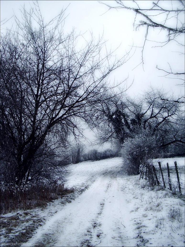 Emotional Winter I by PoussiereObsidienne
