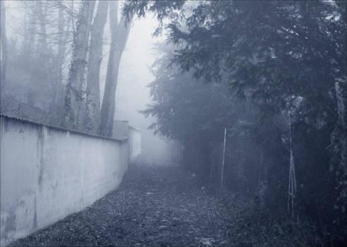 Chemin de Brume