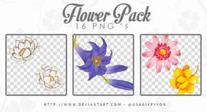 Pack'Flowers