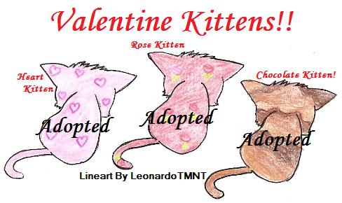 Adopt Valentine Kitten-CLOSED- by Kittypaws89