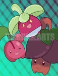 PKMN: Berry Jamborie
