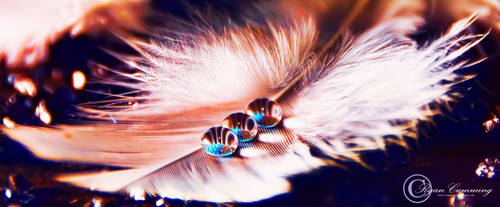 Drops by ryanwaff
