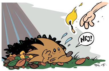 Don't lit the hedgehogs!