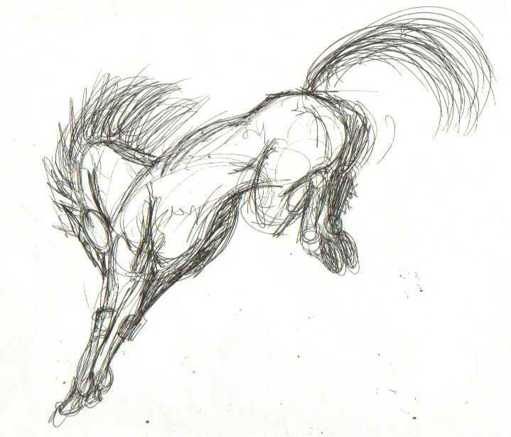Bucking Horse Sketch By Skymouth On DeviantArt