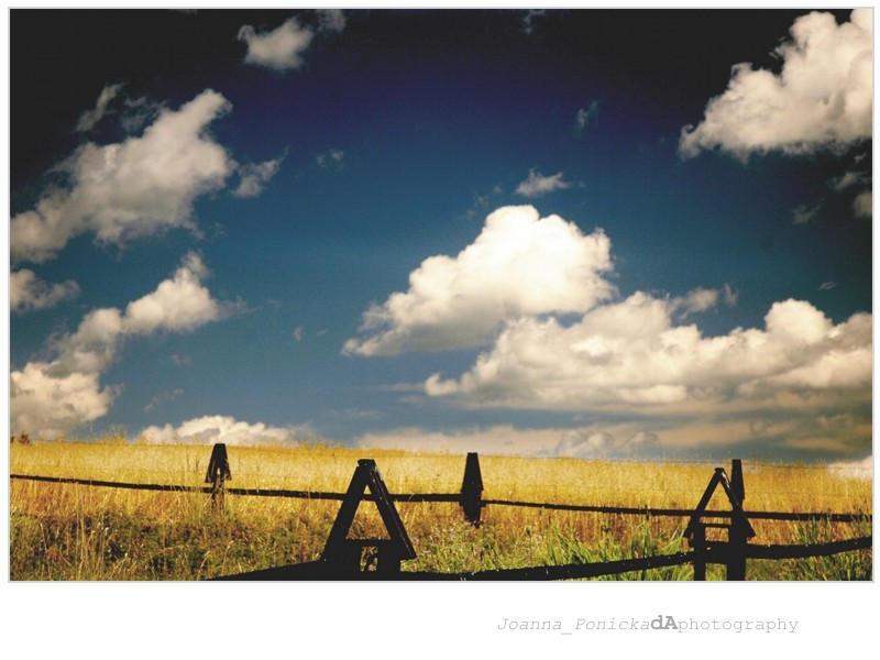 landscape01 by syfonek
