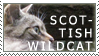 wildcat stamp by twangaloo