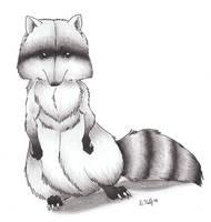 'Rocky Raccoon' by Dezfezable