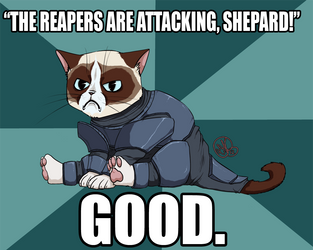 Commander Grumpy by Dezfezable
