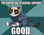 Commander Grumpy