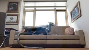 Dragon on the sofa by Dragon-Studio