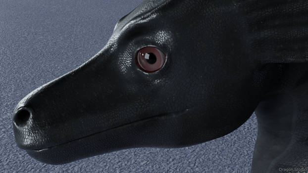 [1/3] Dragon head closeup
