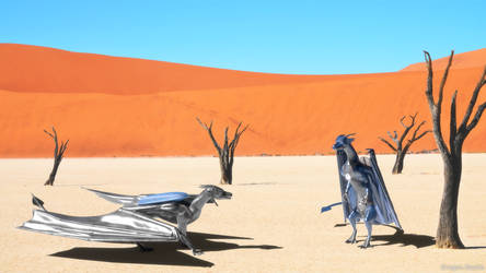 Two Dragons in Desert