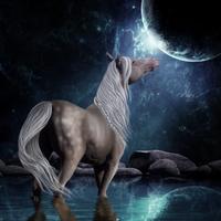 HEE | Moondance by DawnRider7