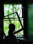 Window by klung1