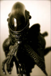 alien bust by klung1