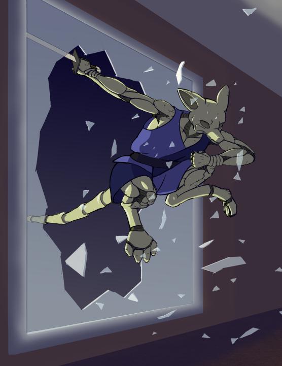 Fox Ninja