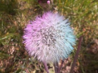 Purple White and Blue by rainrivermusic