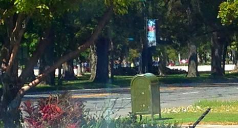 Green mailbox by rainrivermusic