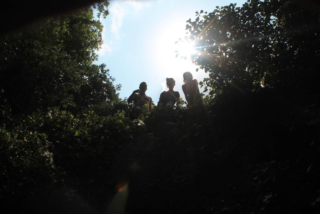 Adventure by oOPencilGeniusOo