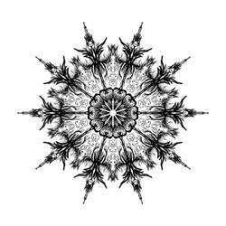 Mandala 169 b