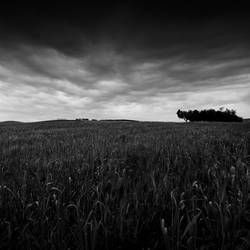 Refuge by AlexandruCrisan