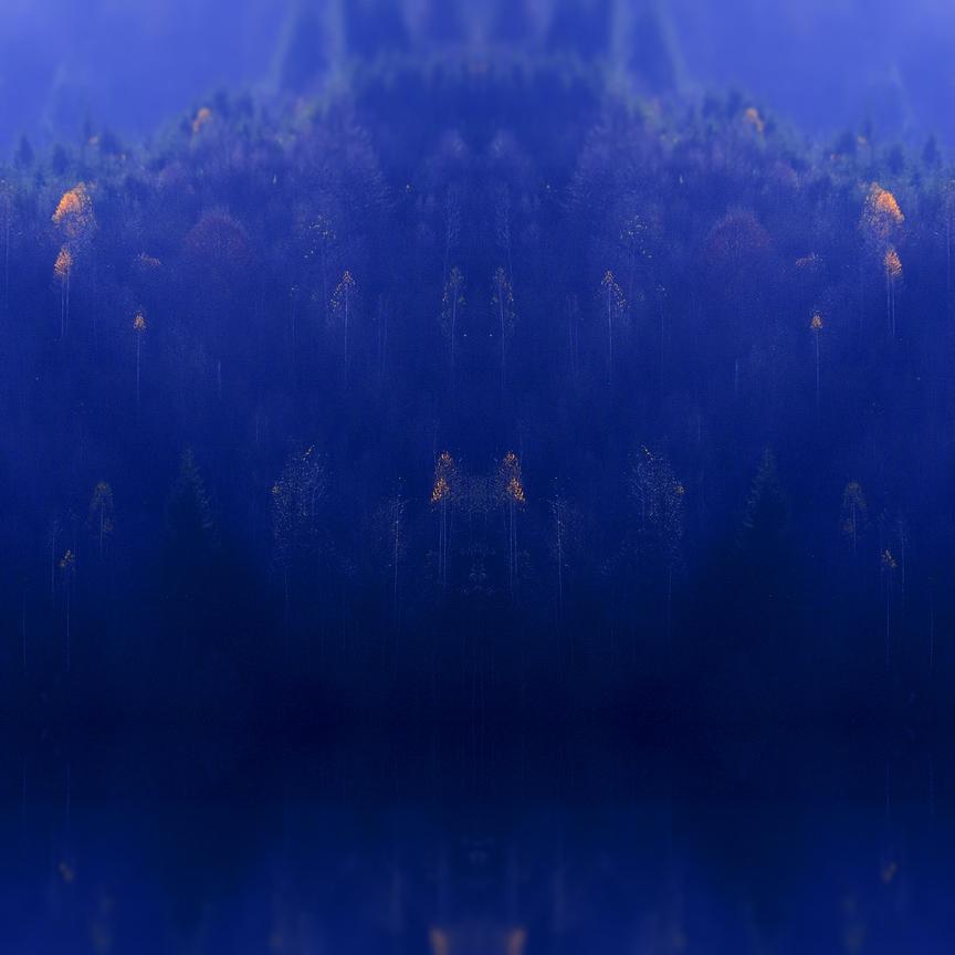 Fairies Island (The Dark Forest) by AlexandruCrisan