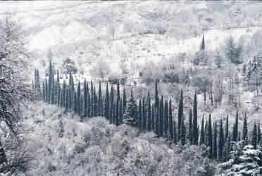 L'hiver by TamarBurduli