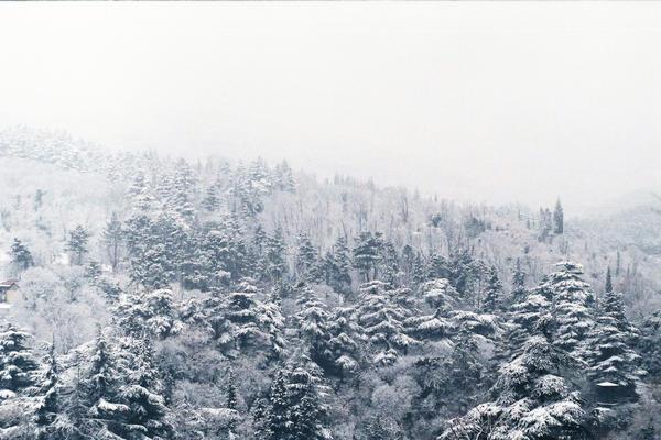 zima by LemonLemonLemon