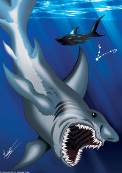 Pisces - The Sharks