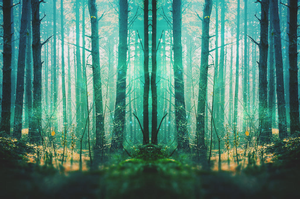 fantasy forest wallpaper by starnightx on deviantart