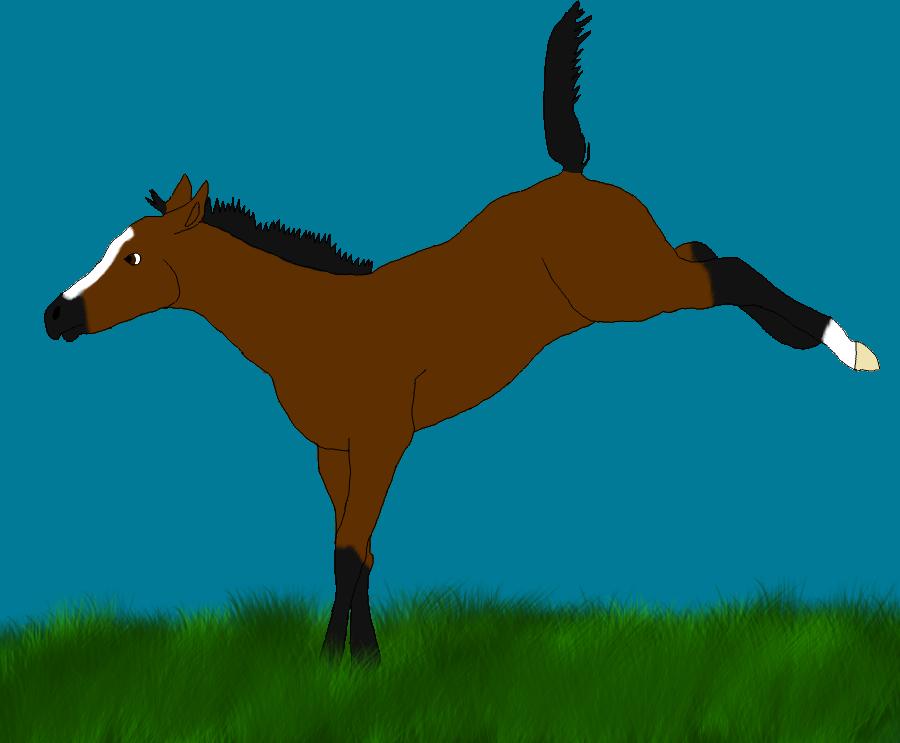 Shadow (Foal Ref) by ZorroHills