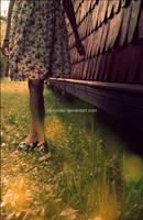 ::Dear Summer...:: by Holunder