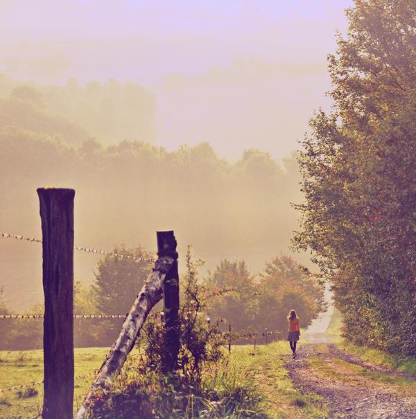Morning Beauty by Holunder